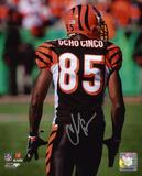 Chad Johnson Cincinnati Bengals - Ocho Cinco Back Shot Autographed Photo (Hand Signed Collectable)