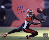 Chad Johnson Cincinnati Bengals - Diving For Catch Autographed Photo (Hand Signed Collectable)