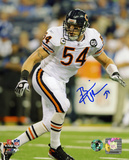Brian Urlacher Chicago Bears - Action Autographed Photo (Hand Signed Collectable)