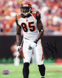 Chad Johnson Cincinnati Bengals -Pose Autographed Photo (Hand Signed Collectable)