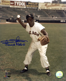 Minnie Minoso Chicago White Sox Autographed Photo (Hand Signed Collectable)