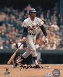 Rod Carew Minnesota Twins Autographed Photo (Hand Signed Collectable)