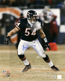 Brian Urlacher Chicago Bears - Windy City - 16x20 Autographed Photo (Hand Signed Collectable)