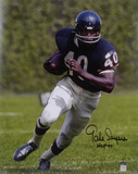 Gale Sayers Chicago Bears with HOF '77 Inscription Autographed Photo (Hand Signed Collectable)