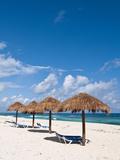 Beach Near Punta Morena  Isla De Cozumel (Cozumel Island)  Cozumel  Mexico  North America