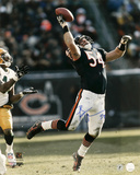 Brian Urlacher Chicago Bears - Interception vs Packers Autographed Photo (Hand Signed Collectable)