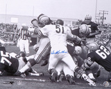 Dick Butkus Chicago Bears - Packer Pile Autographed Photo (Hand Signed Collectable)