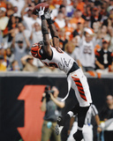 Chad Johnson Cincinnati Bengals -v Dallas Autographed Photo (Hand Signed Collectable)