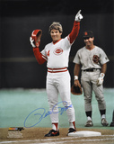 Pete Rose Cincinnati Reds Autographed Photo (Hand Signed Collectable)