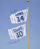 Ernie Banks & Ron Santo Chicago Cubs Retired Number Flag Autographed Photo (H& Signed Collectable)