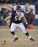 Brian Urlacher Chicago Bears 16x20 Autographed Photo (Hand Signed Collectable)