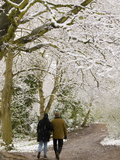 Hampstead Heath in the Snow  London  England  United Kingdom  Europe
