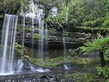 Russell Falls  Mount Field National Park  UNESCO World Heritage Site  Tasmania  Australia  Pacific