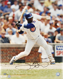 Sammy Sosa Chicago Cubs Autographed Photo (Hand Signed Collectable)