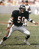 Mike Singletary Chicago Bears with HOF '98 Inscription Autographed Photo (Hand Signed Collectable)