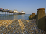 Eastbourne Pier  Beach and Groynes  Eastbourne  East Sussex  England  Uk