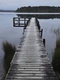 Dock  Shanghai Bay  Lake Mahinapua  West Coast  South Island  New Zealand  Pacific