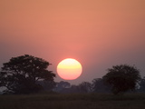 Sunset  Busanga Plains  Kafue National Park  Zambia  Africa