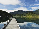 Penzance Bay  Tennyson Inlet  Marlborough Sounds  Marlborough  South Island  New Zealand  Pacific