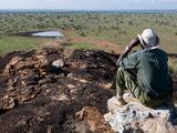 Lualenyi Game Reserve  Near Tsavo National Park  Kenya  East Africa  Africa
