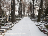 Snow-Covered Cemetery  Village of Treboradice  Prague  Czech Republic  Europe