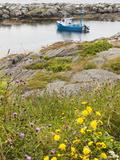 Scene Around Blue Rocks in Lunenburg Harbour  Nova Scotia  Canada  North America