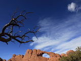 A Natural Sandstone Rock Arch in Arches National Park  Near Moab  Utah