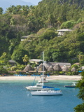 Young Island Resort  St Vincent and the Grenadines  Windward Islands  West Indies  Caribbean
