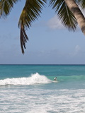 Surfers at Enterprise Point  Barbados  Windward Islands  West Indies  Caribbean  Central America