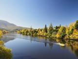 River Derwent Near New Norfolk  Tasmania  Australia  Pacific