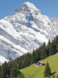 Jungfrau Massif and Swiss Chalet Near Murren  Jungfrau Region  Switzerland  Europe