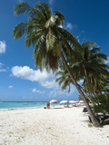 Carib Beach  Barbados  Windward Islands  West Indies  Caribbean  Central America