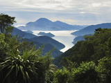 Tennyson Inlet  Marlborough Sounds  Marlborough  South Island  New Zealand  Pacific