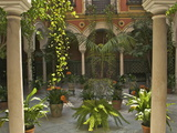 Beautiful Sevillan Patio  Triana District  Sevilla  Andalusia  Spain  Europe