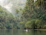 Loboc River  Bohol  Philippines  Southeast Asia  Asia