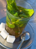 Mint Tea  Marrakech  Morocco  North Africa  Africa