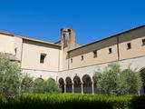 Roman-Etruscan Museum of Tuscania  Tuscania  Viterbo Province  Latium  Italy  Europe