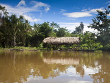 Warao Indian Hatched-Roof Huts Built Upon Stilts  Delta Amacuro  Orinoco Delta  Venezuela