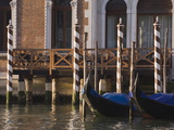 Morning Light  Mooring Poles on the Grand Canal  Venice  UNESCO World Heritage Site  Veneto  Italy