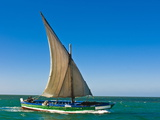 Traditional Sailing Boat in Waters of the Banc D'Arguin  Mauritania  Africa