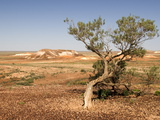 The Breakaways  Painted Desert  Coober Peedy  South Australia  Australia  Pacific