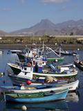 Las Galletas  Tenerife  Canary Islands  Spain  Atlantic  Europe