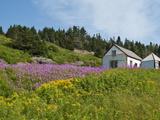 Historic Settlement on Ile Bonaventure Offshore of Perce  Quebec  Canada  North America