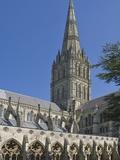 Salisbury Cathedral  Wiltshire  England  United Kingdom  Europe