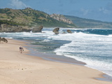 Mature Couple Walking on Bathsheba Beach  Barbados  Windward Islands  West Indies  Caribbean