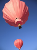 Hot Air Balloons  Los Lunas  New Mexico  United States of America  North America