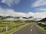 Road and Farmland  Near Matawai  Gisborne  North Island  New Zealand  Pacific