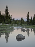 Little Bear Creek at Dawn  Shoshone National Forest  Montana