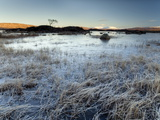 Winter View Across Frozen Lochain Na H'Achlaise at Dawn  Scotland