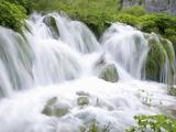Foaming Cascades  Plitvice Lakes National Park (Plitvicka Jezera)  Lika-Senj County  Croatia